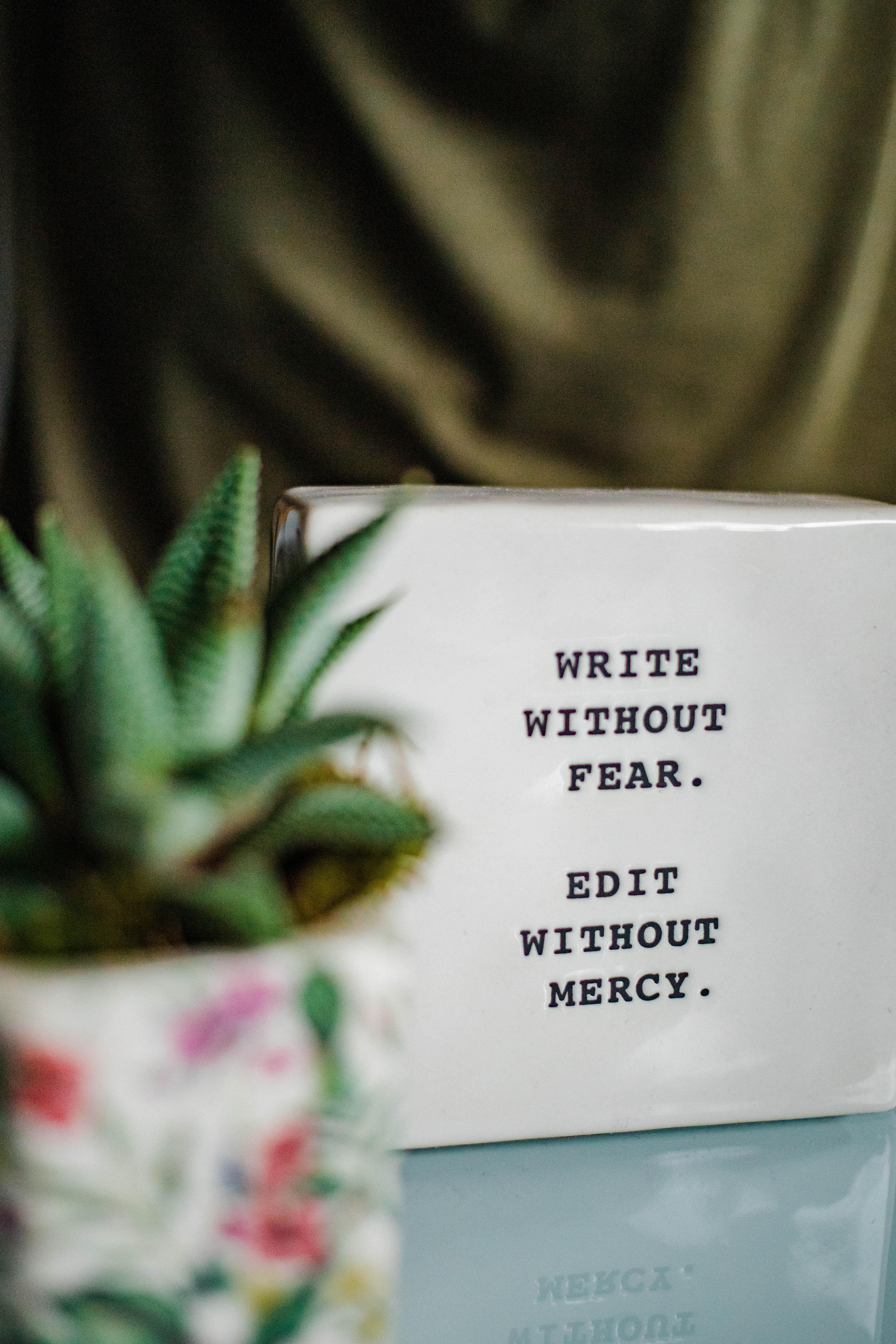 Skillnaden mellan en förlagslektör och författarlektör